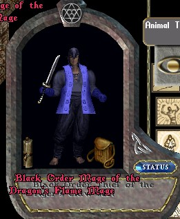 Black Order Thief